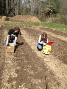 Vacationing girls help plant potatoes on Cloud 9 Farm