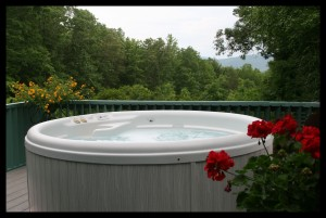 Group Vacation Rental in Asheville NC