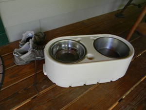 Bring your pets' water dishes on your vacation.